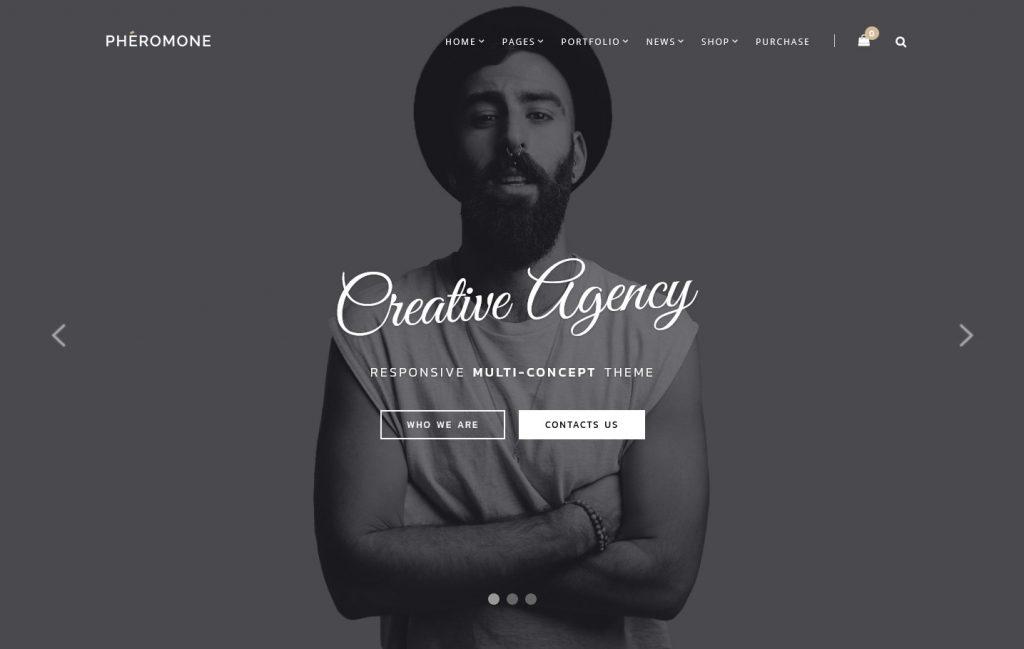 Pheromone Creative Agency Multi Concept WordPress Theme