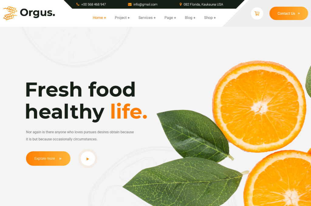 Orgus – Organic Food Store WordPress Theme
